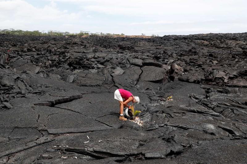 Một người phụ nữ buộc phải rời nhà khi núi lửa Kilauea phun trào đang trồng một cây dừa ở nơi từng là nhà của bà tại Kapoho, Hawaii.